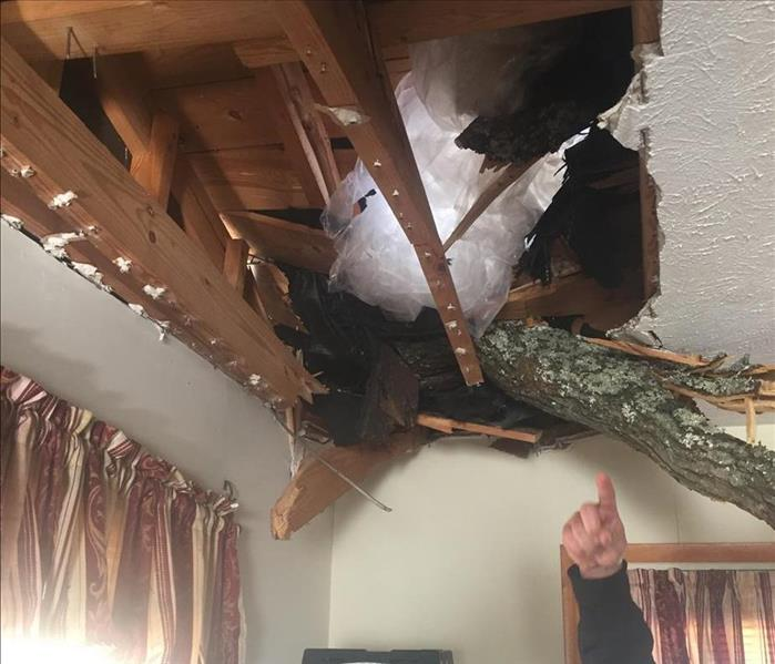 Storm causes 100 Ft. Oak Tree to Fall on House