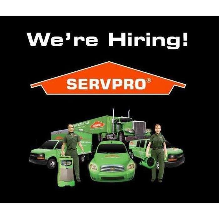 orange SERVPRO logo and cars with man and woman standing in front