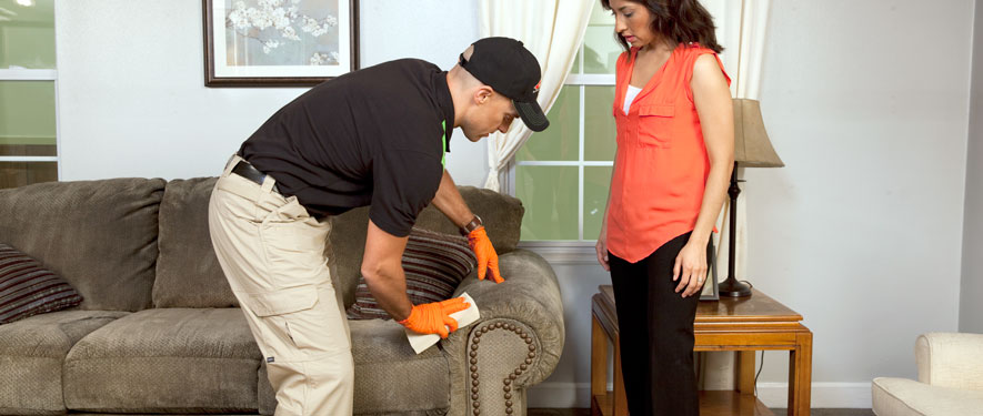 Roanoke, VA carpet upholstery cleaning